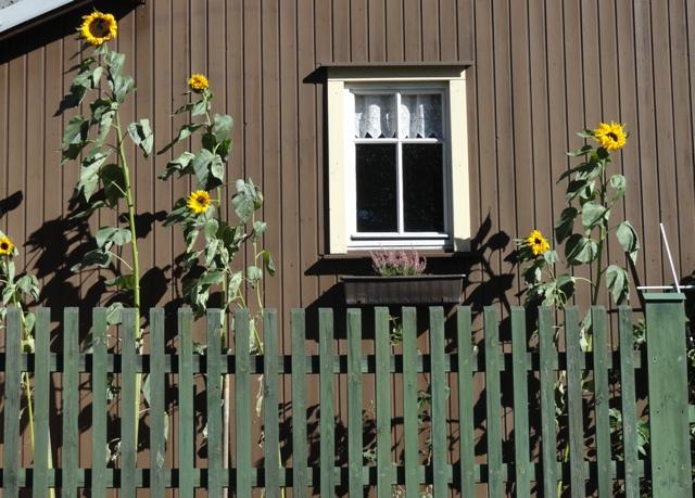 SATW Germany Oct. 2010 008.JPG