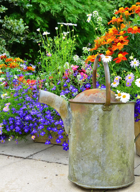 floral-enhanced-inspiring-interior-decor-54386448.jpgfloral-enhanced-inspiring-interior-decor-54386448-1500px.jpg