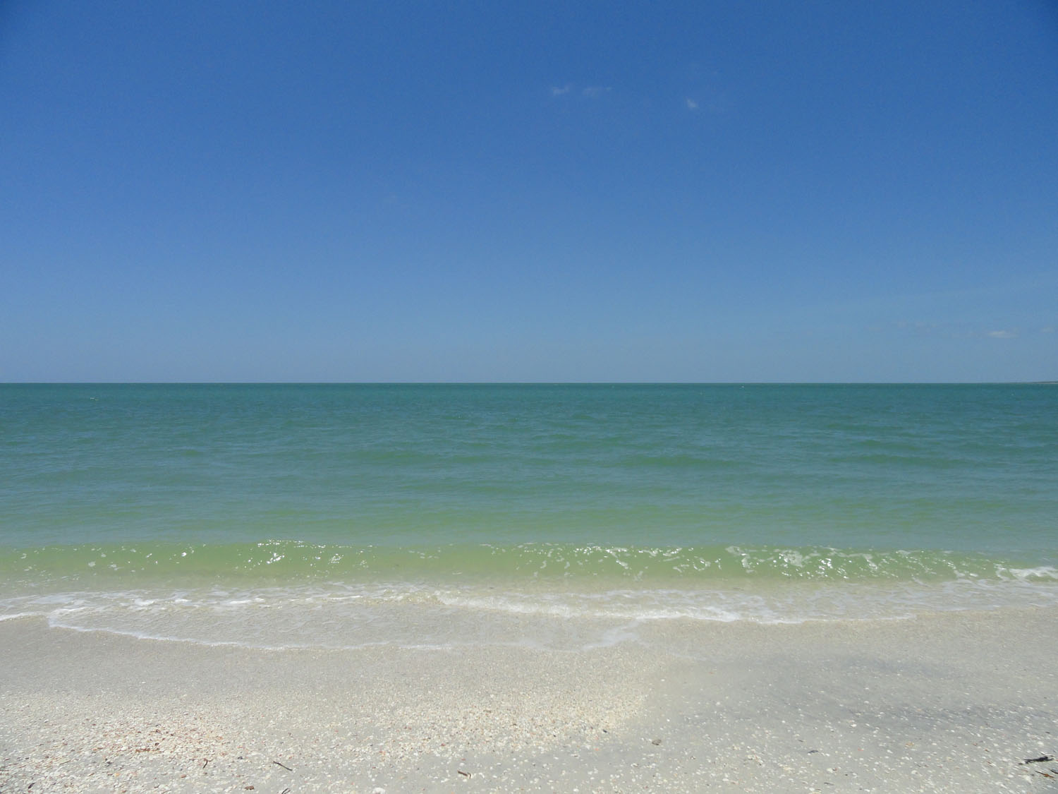 Gulf-of-mexico-Color-palette.jpg