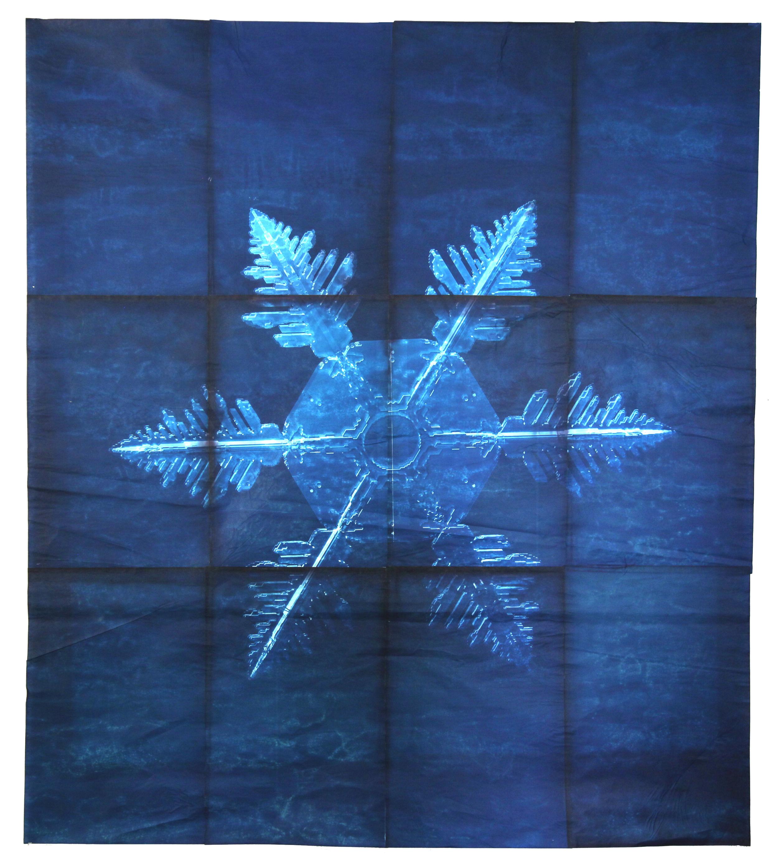 Snowflake #4, 2011