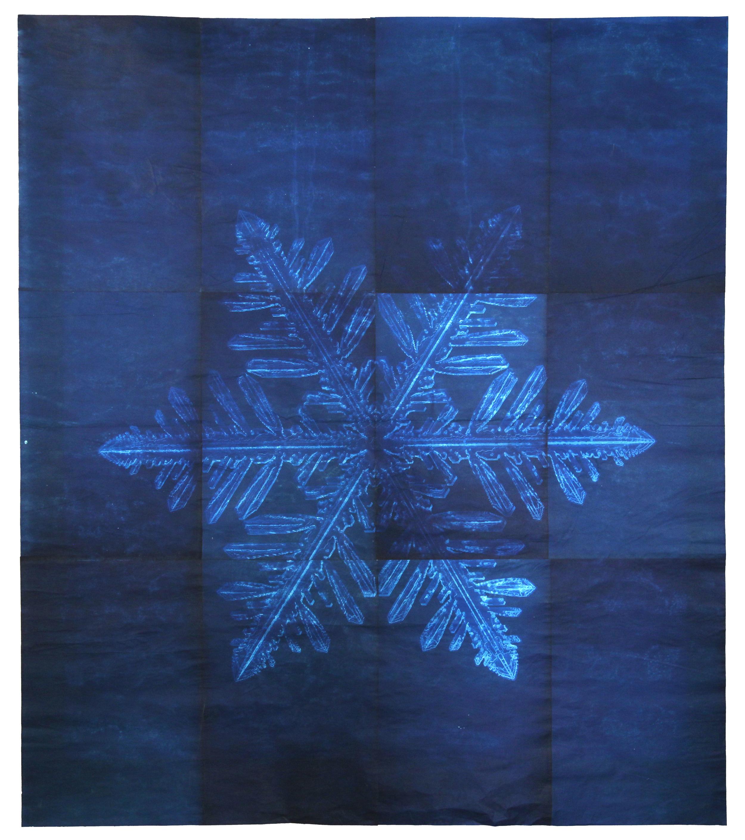 Snowflake #8, 2011