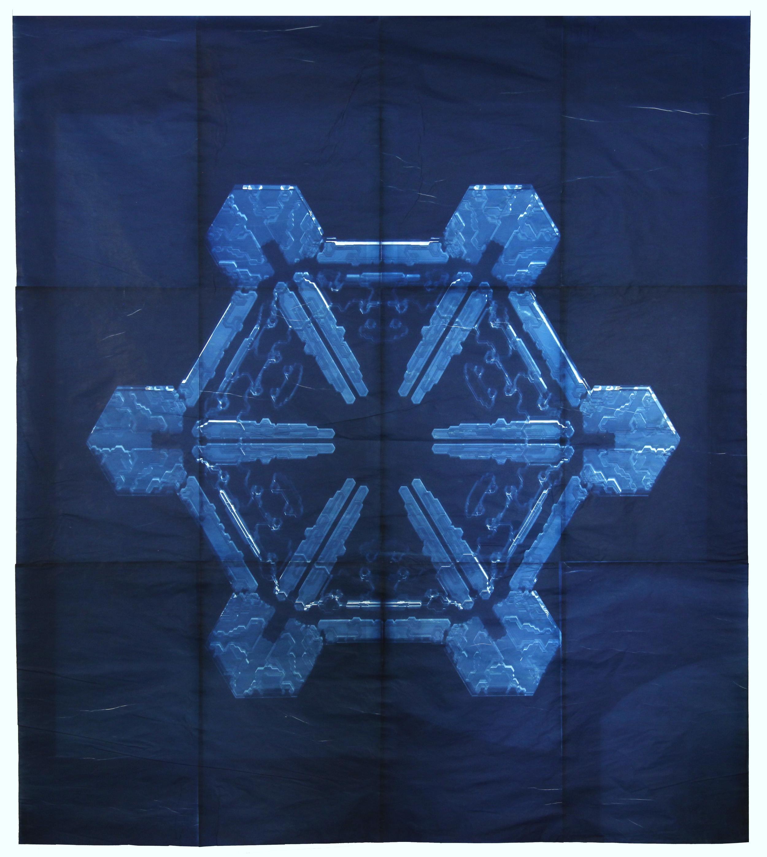 Snowflake #11, 2011