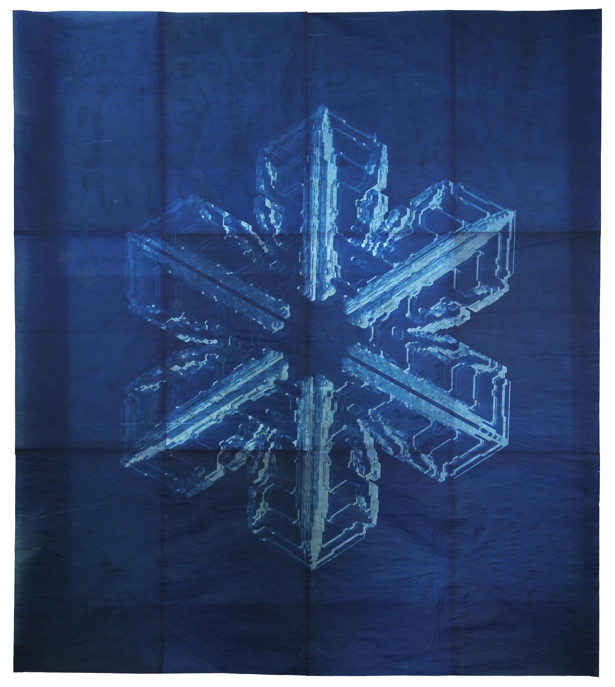 Snowflake #10, 2011