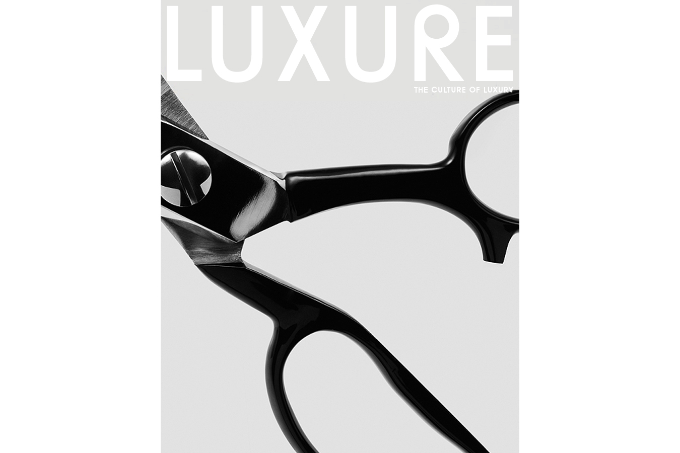 Luxure Tailored Issue Cover I