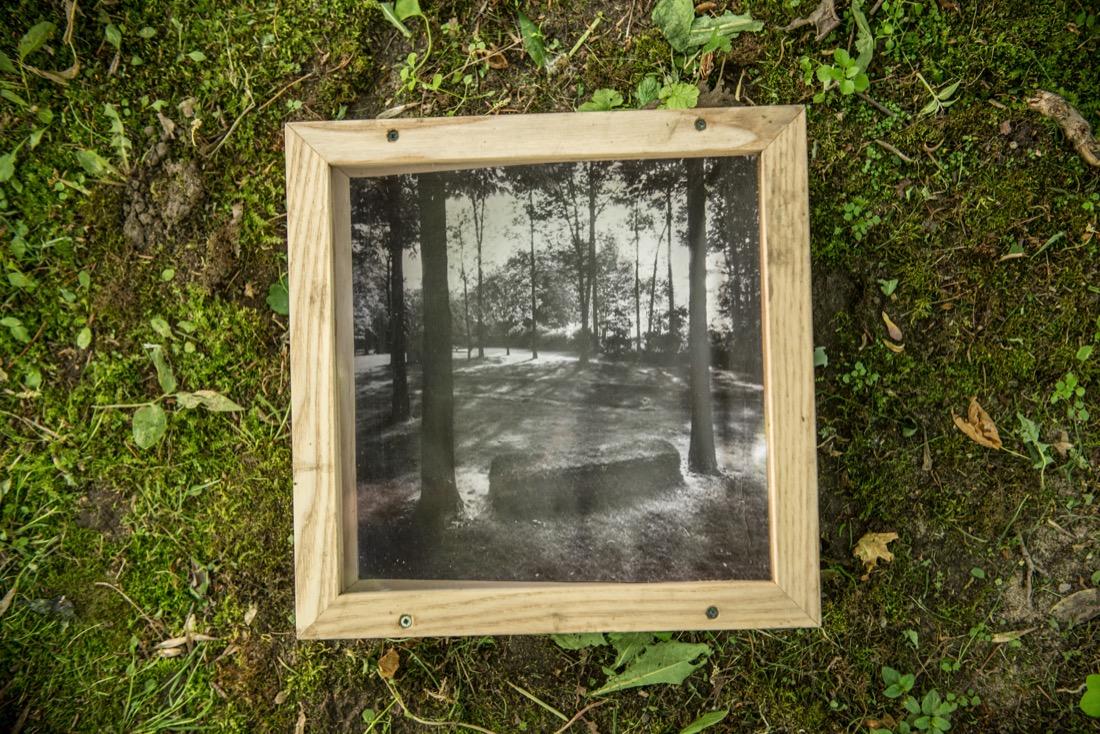 vitrine9.jpg