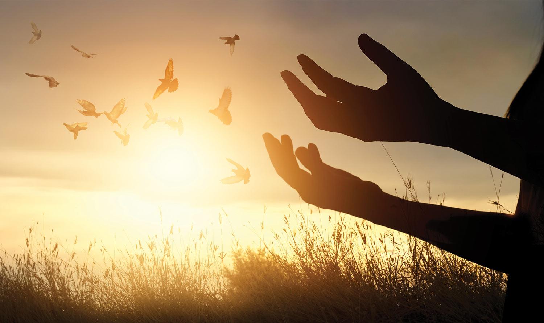 light-hands-birds.jpg
