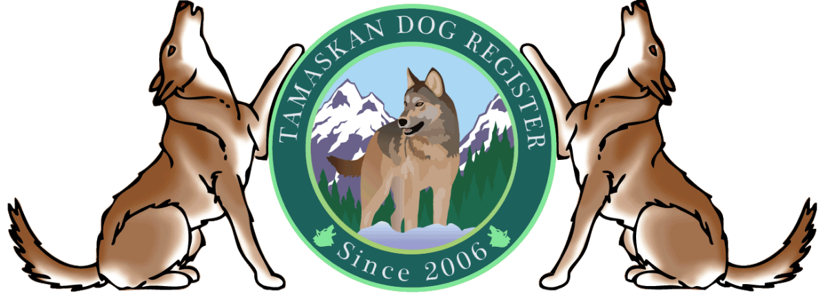 White Elk Tamaskan is a TDR Registered breeder