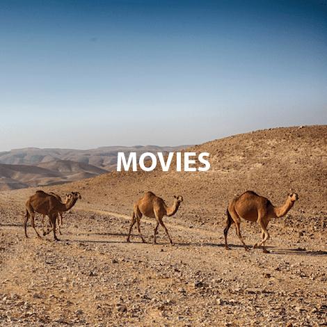 Camels walking MOVIES.png