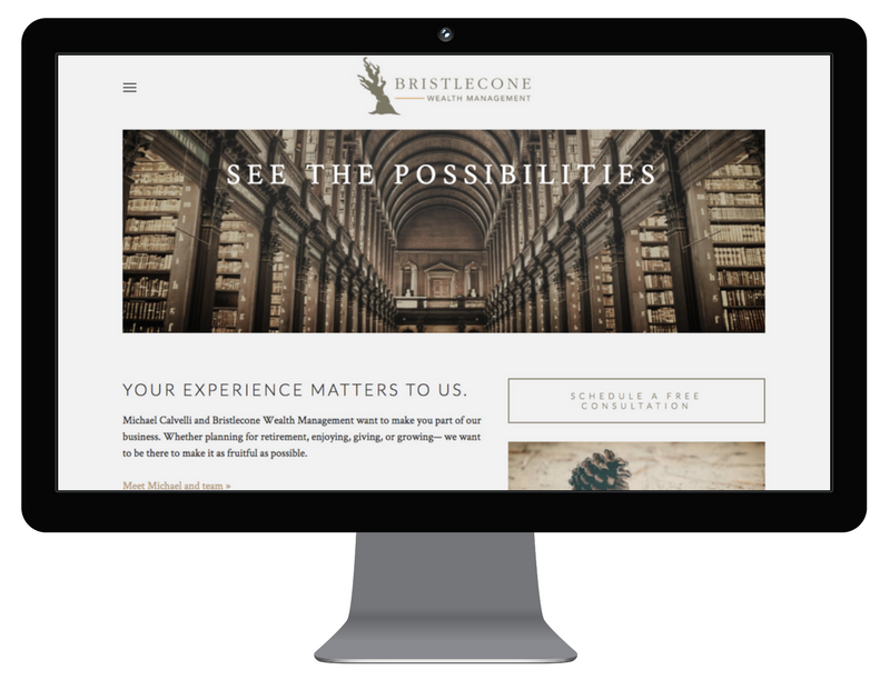 Bristlecone wealth management - web design