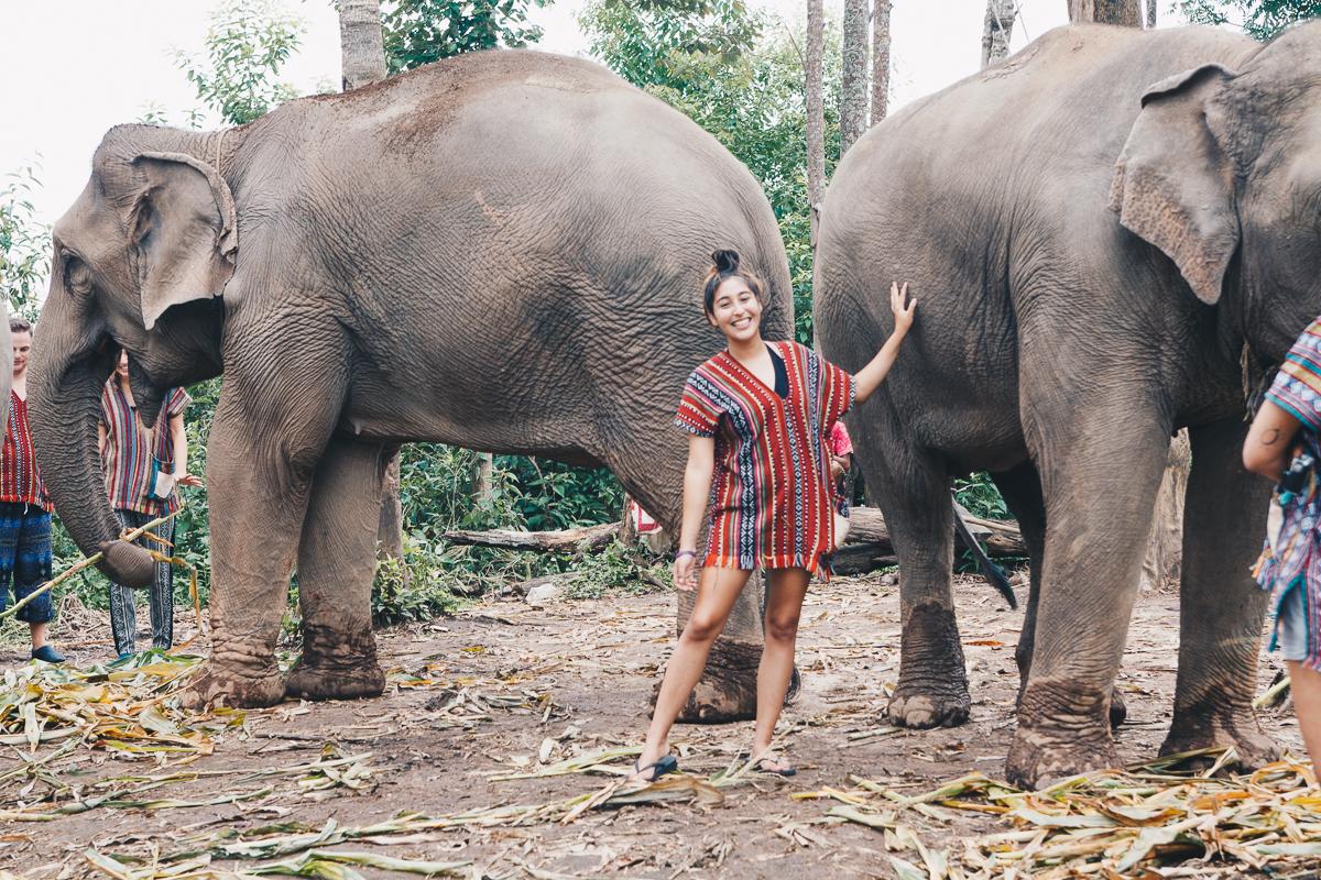 Chiang_Mai-96.jpg