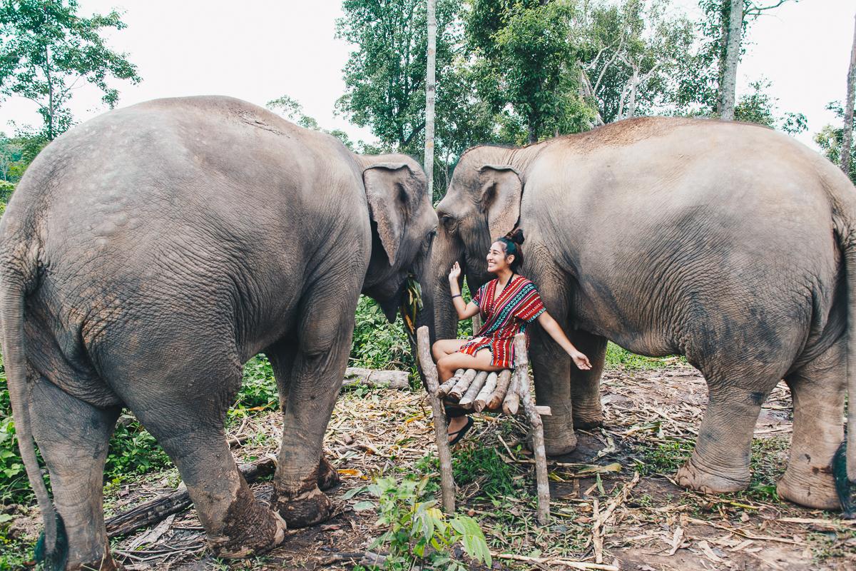 Chiang_Mai-101.jpg