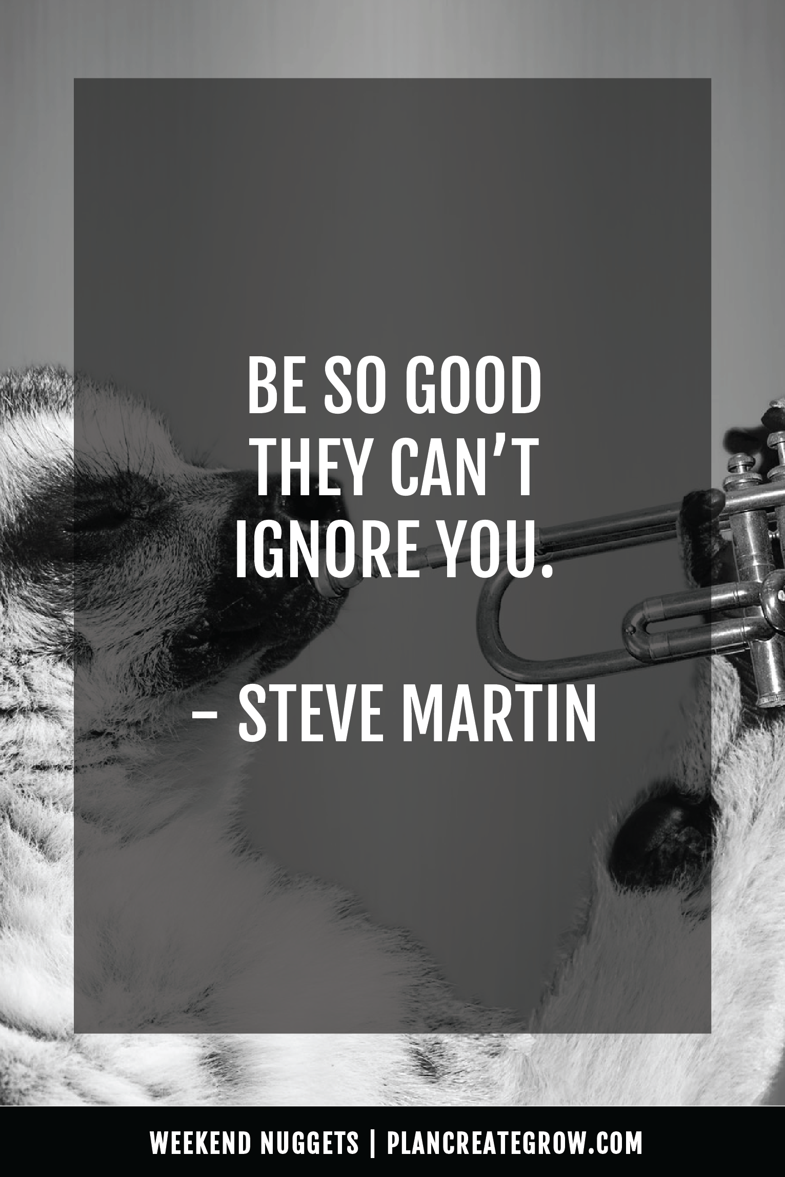 """""""Be so good they can't ignore you."""" - Steve Martin  This image forms part of a series called Weekend Nuggets - a collection of quotes and ideas curated to delight and inspire - shared each weekend. For more, visit plancreategrow.com/weekend-nuggets."""