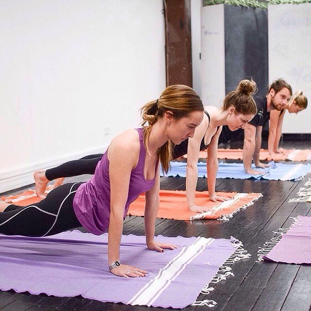 Cobra 🐍  #yoga #yogini #yogaclass #yogaeveryday #yogalife #meditation #iloveyoga #fitness #yogateacher #mindfulness #iloveyoga #strong #yogaeverydamnday #yogachallenge #mindfulnessmeditation #sensorymeditation #charteredaccountant  #meditationmonday #mondaymind #mondaymindset #mondayminds #surpriseyoga #fitnessaddict #fitnessmotivation #fit #sydney #healthyliving #healthylifestyle  #corporateyoga #corporatemeditation