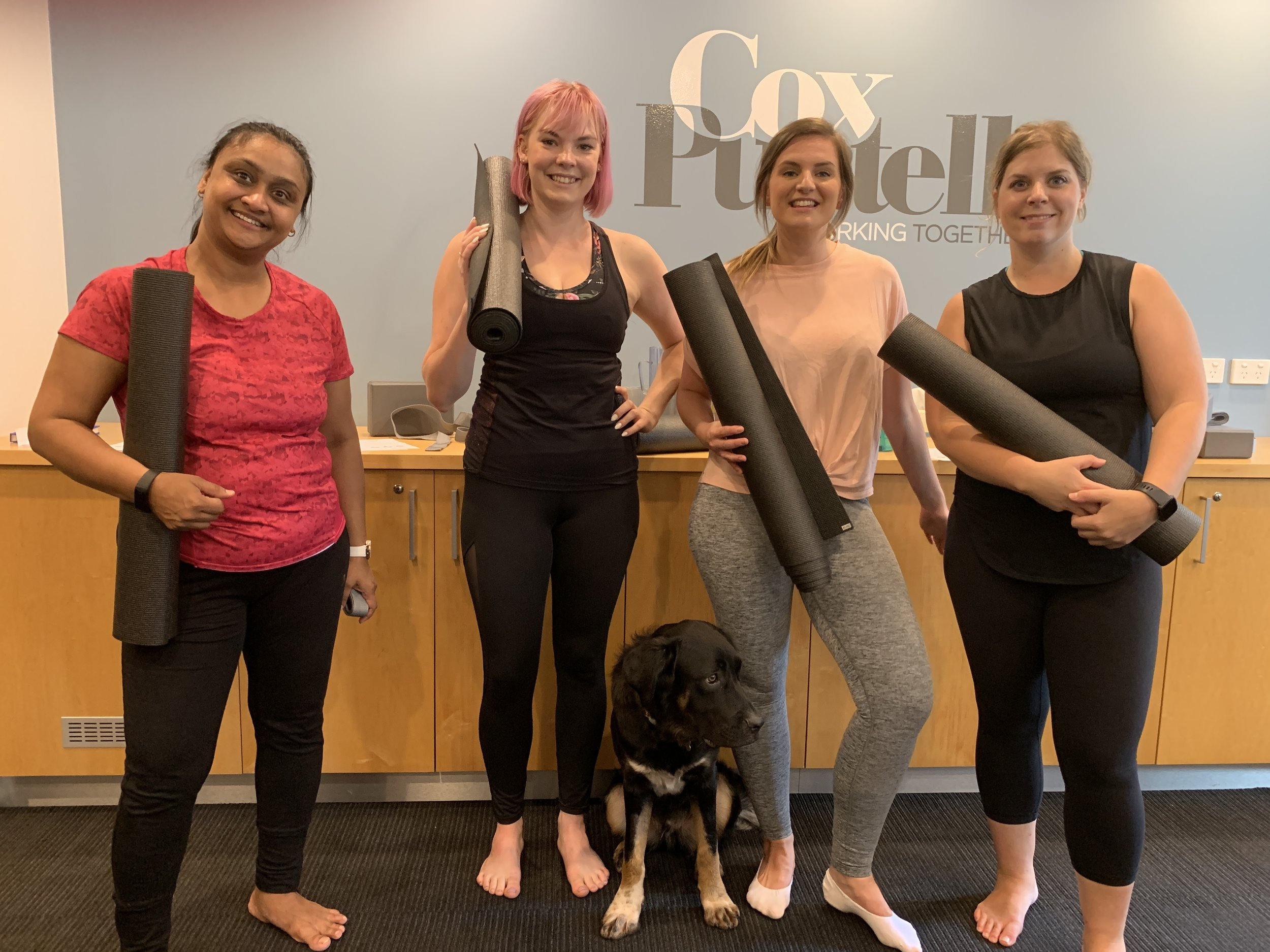 Dogs and office yoga on a Friday. February 2019.