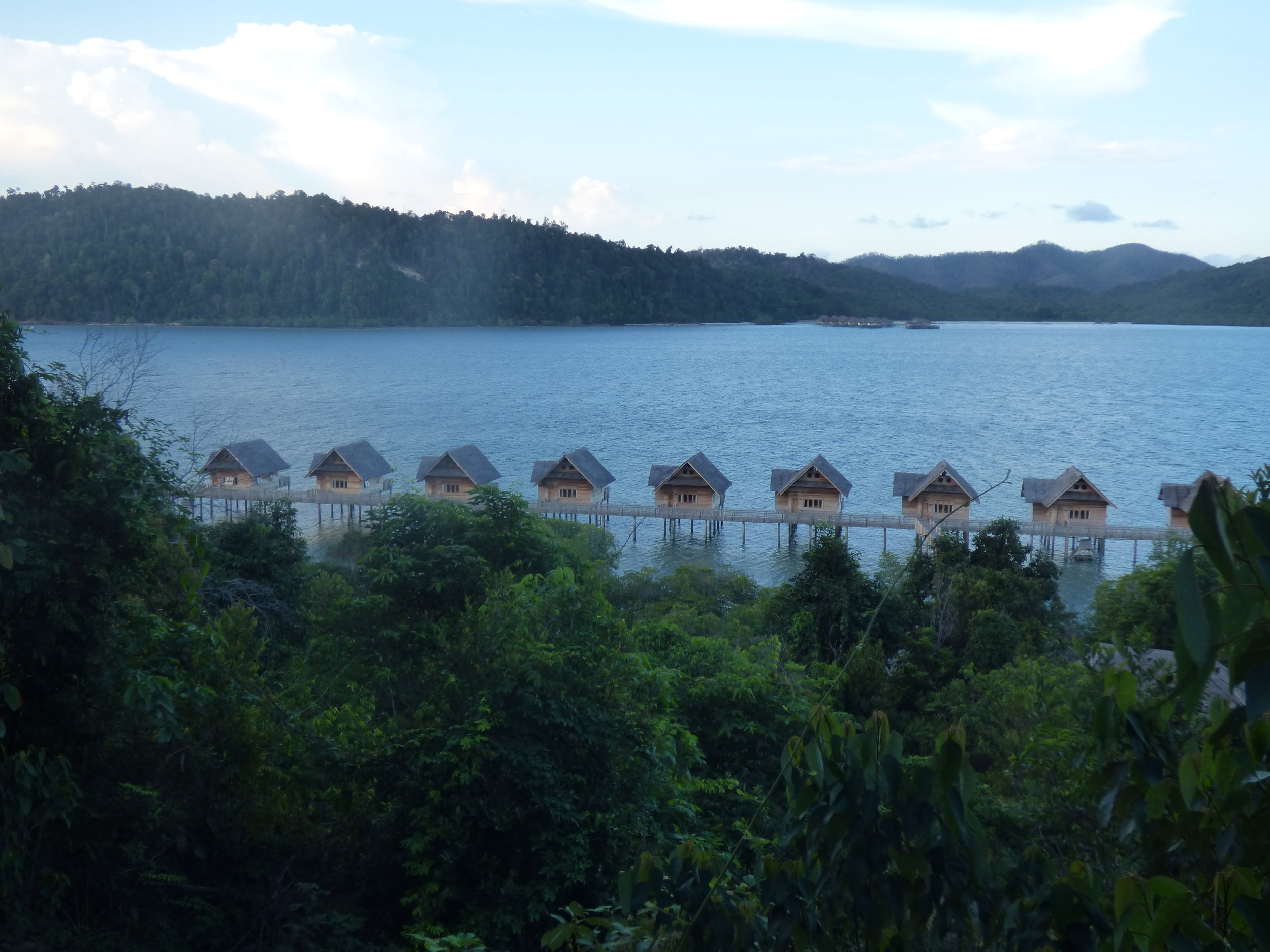 Telunas-Long.JPG