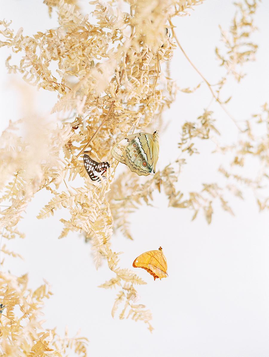 OTOGRAPHY_SHOP GOSSAMER_BUTTERFLY_LOS ANGELES WEDDING INSPIRATION-230.jpg
