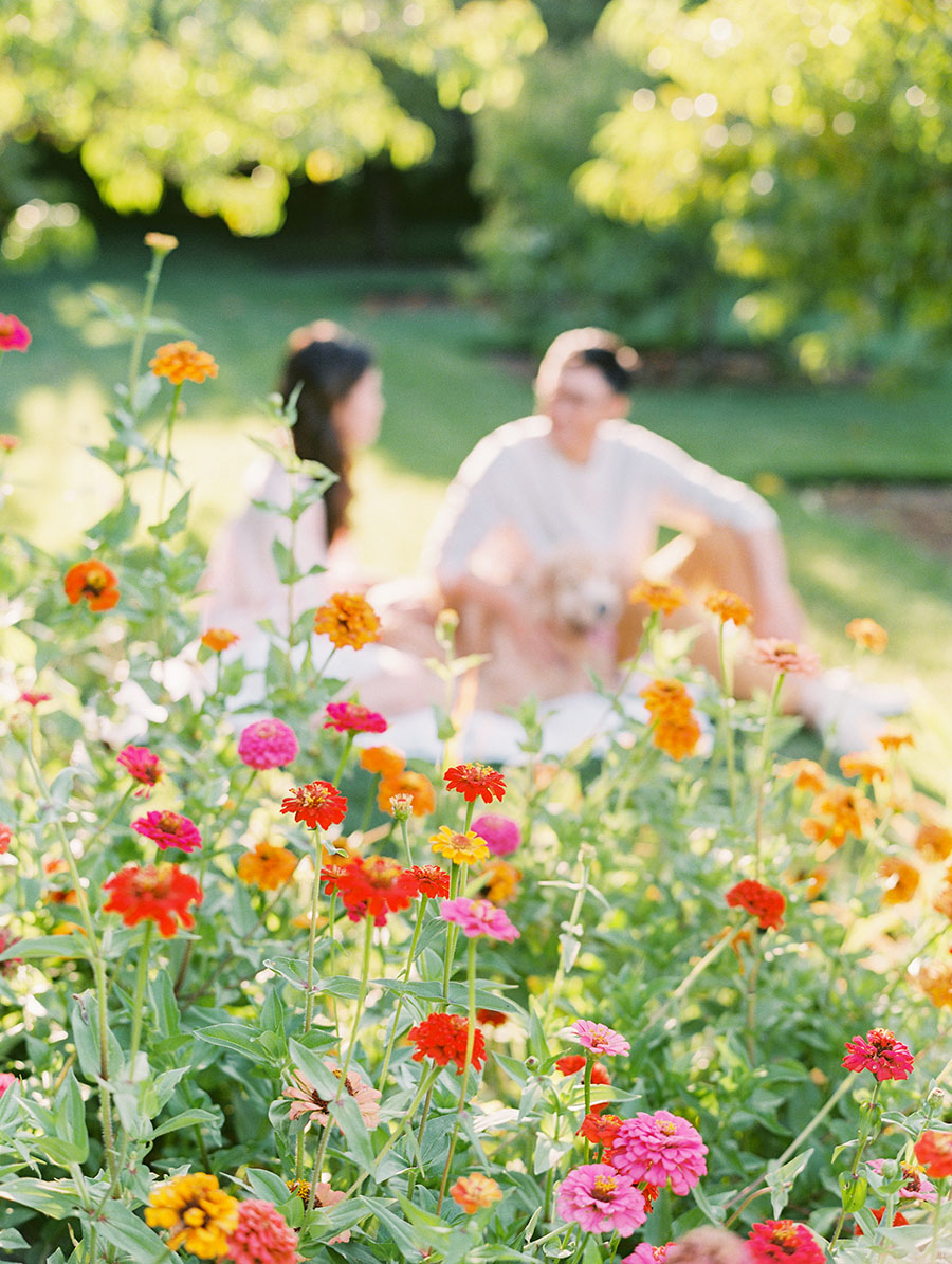 SALLY PINERA_KESTREL PARK_SHELLY AND DENNIS_ENGAGEMENT PHOTOS-284.jpg