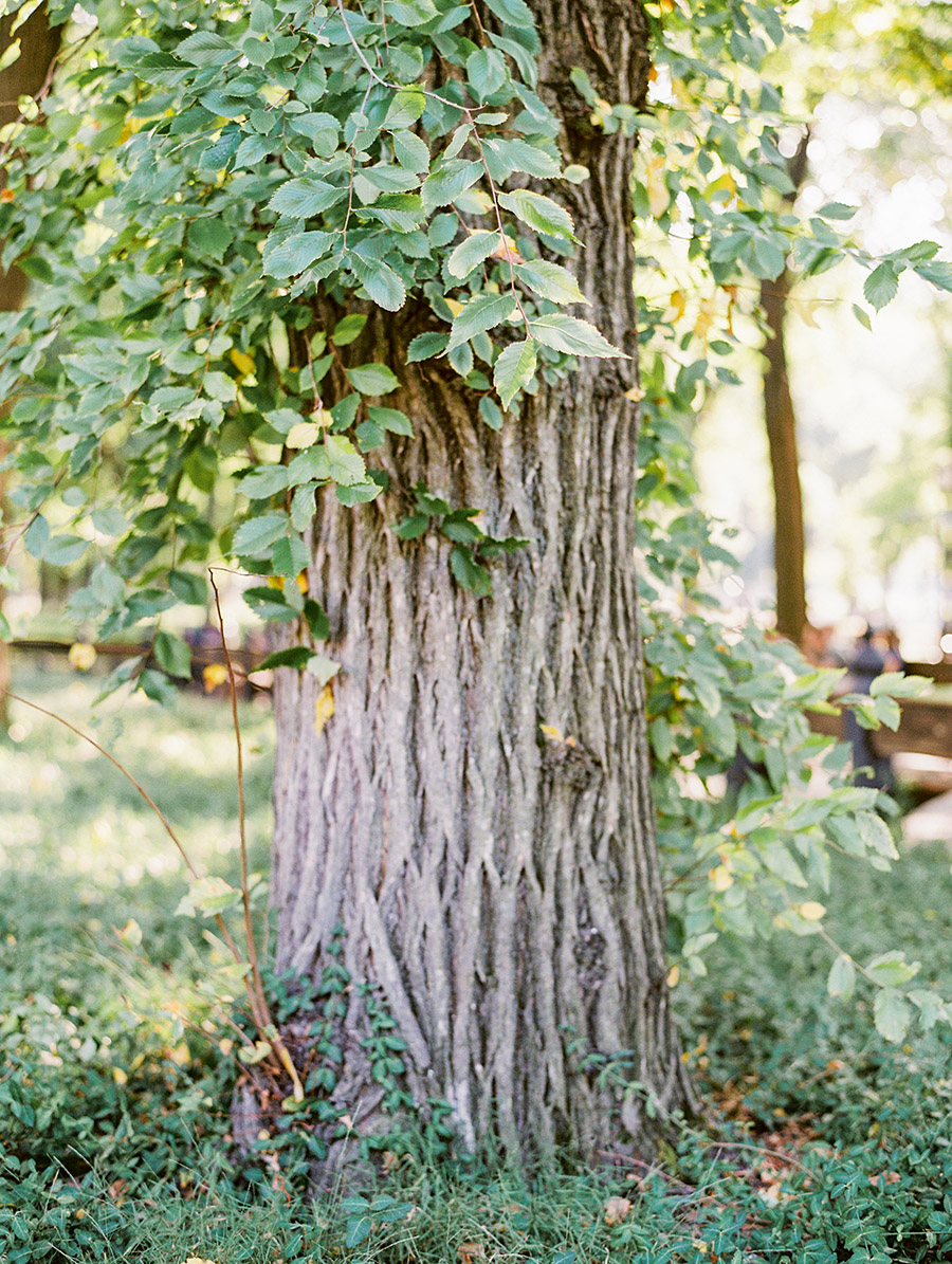 SALLY PINERA PHOTOGRAPHY_ANNABELLE CARLOS_NYC ENGAGEMENT PHOTOGRAPHY-32.jpg
