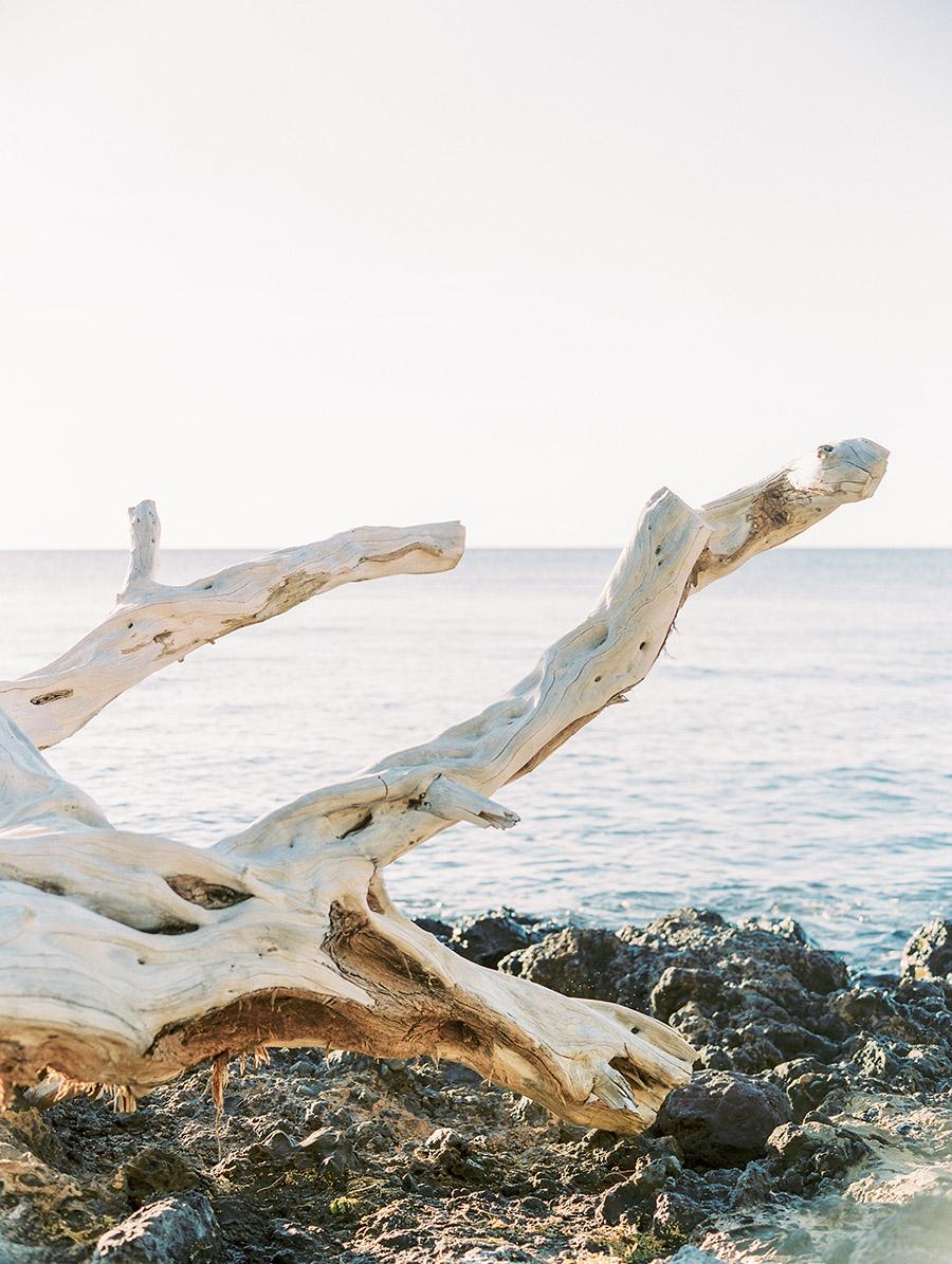 Sally Pinera_Hawaii Engagement_Kylie Swanson-126.jpg