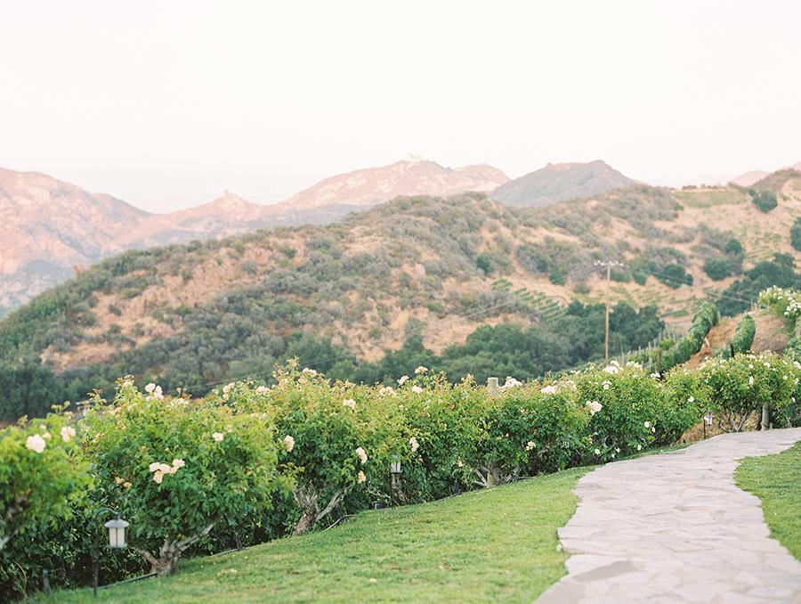 SALLY PINERA PHOTOGRAPHY_KATIE AND COLTON_MALIBU_SADDLEROCK WEDDING-695.jpg