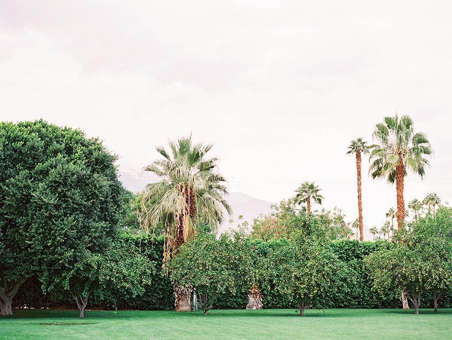 PARKER_PALMSPRING_WEDDING_SALLY_PINERA_PHOTOGRAPHY-441.jpg