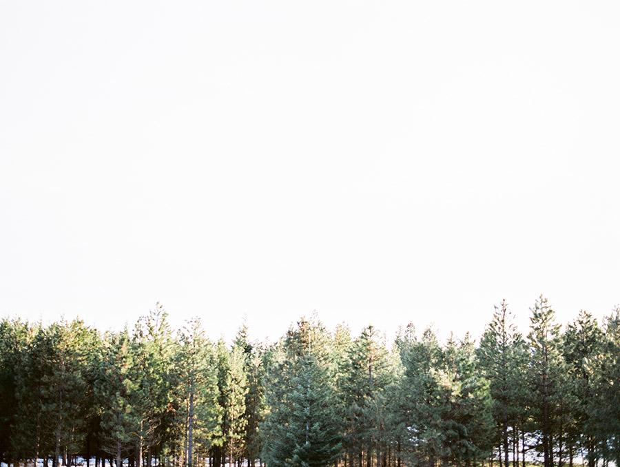 Sally Pinera Photography_Rian_Seattle Wedding-607.jpg