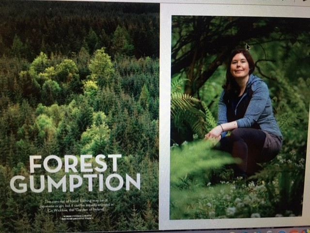 FOREST BATHING ARTICLE IN THE JULY EDITION OF AER LINGUS CARA MAGAZINE BY THE AWARD WINNING JOURNALIST YVONNE GORDAN. CLICK  HERE  FOR LINK