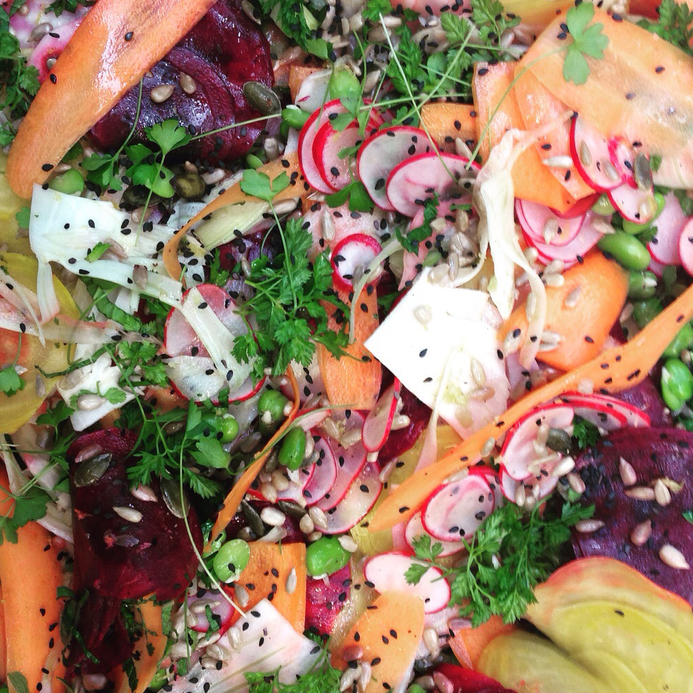 Red and golden beets w shaved carrot, radish, fennel and chervil