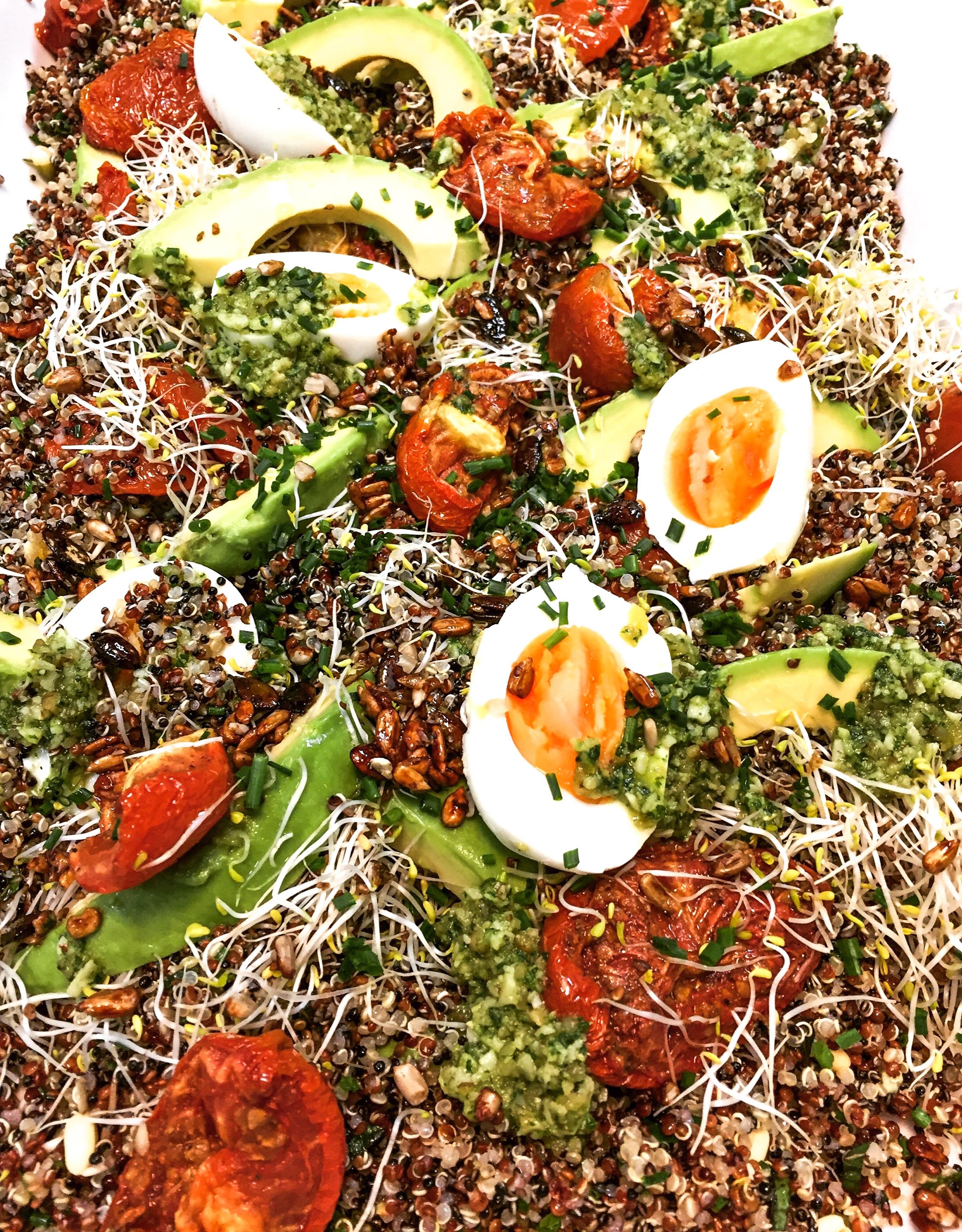 Mixed quinoa, slow roast tomato, avocado and soft boiled egg w walnut pesto