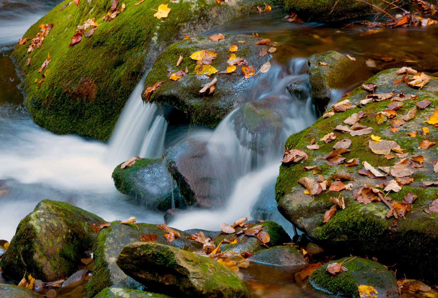 Fall At The Falls.jpg