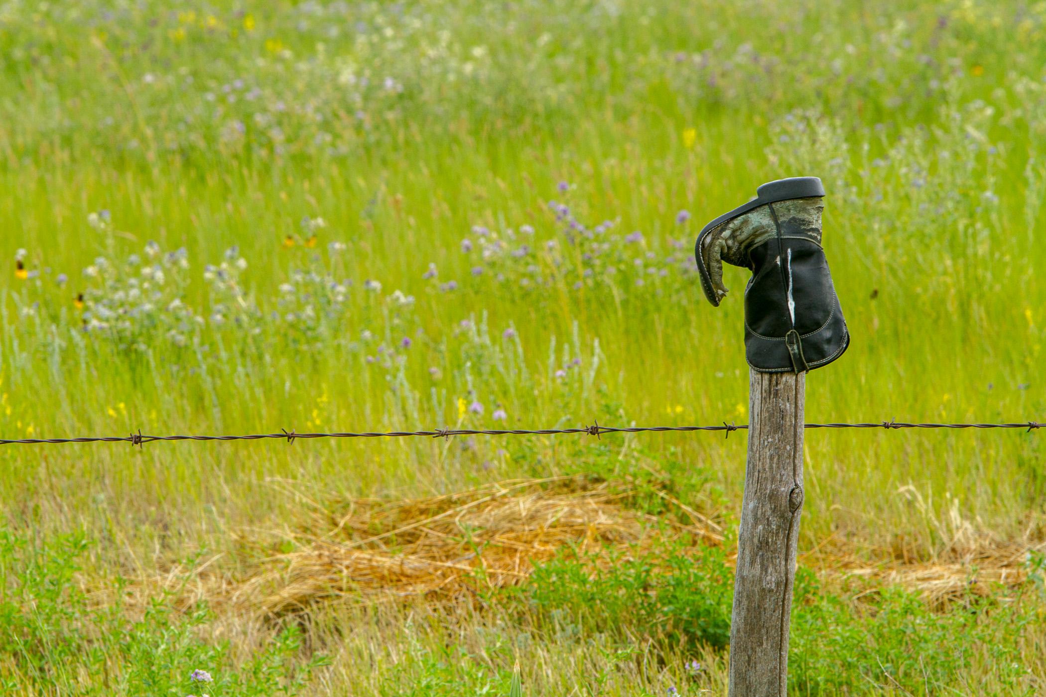 Boot - Grasslands NP Canada