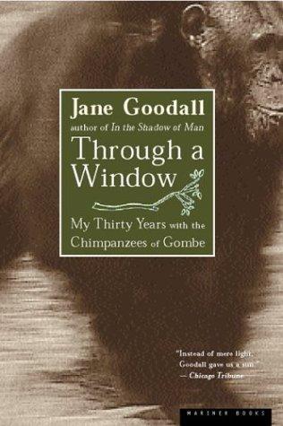 through a window.jpg