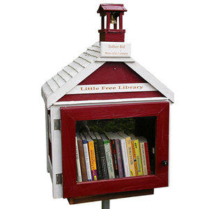 little free library holiday gift guide books