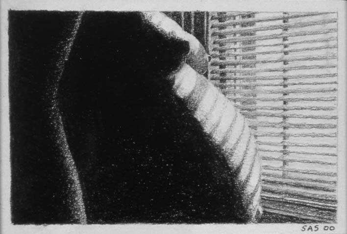 Blind Shadowed Pregnancy, 2000.  This was one of my first drawings.  When it won a prize at a local art show, I took it as a sign that I was meant to be an artist.