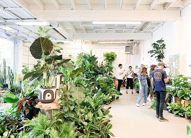 Team inspo tour @ariumbotanicals . . . #westofwest #plants #succulents #monstera #moreplants #cactus #architecture #design #inspo #architect #interiordesign