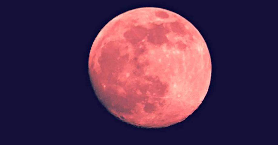 Strawberry Full Moon 2019
