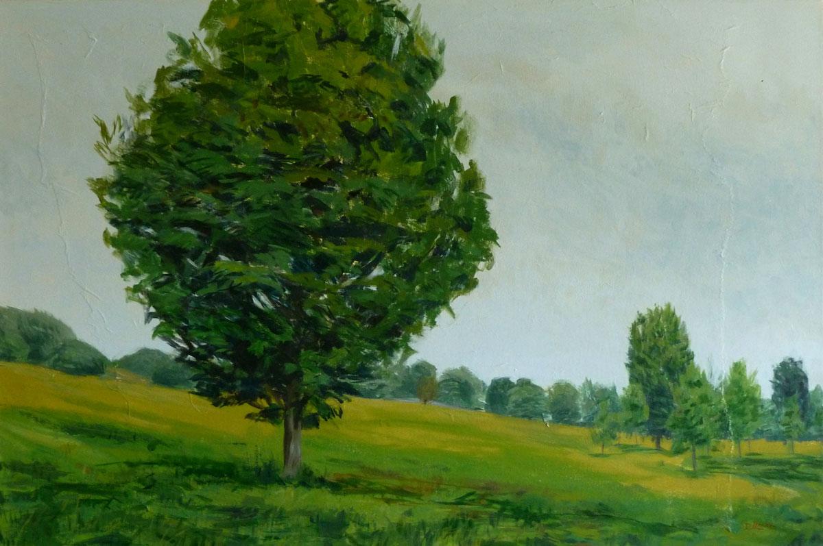 Tree, Olana