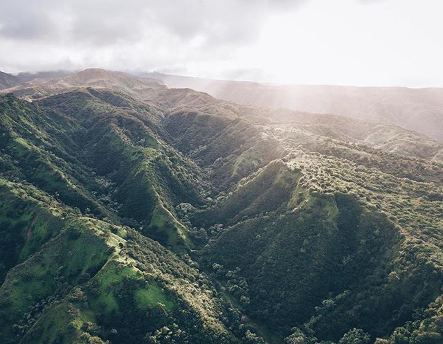 #nofilterneeded #love #hawaii #oahu #haikustairs #stairwaytoheaven #nature #naturephotography #forest #beautiful #view #clouds #photography #dronephotography #clouds #camera #timelapse #honululu