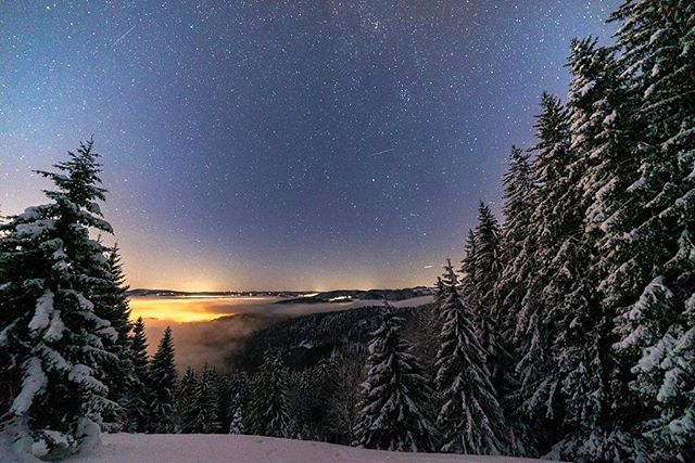 """To appreciate the beauty of a snowflake, it is necessary to stand out in the cold."" #winterwonderland #winter #beautiful #nightsky #stars #view #night #photography #passion #naturephotography #nature #blackforest #blackforestcollective #forest #followme #beautifuldestinations #travel #travelphotography"