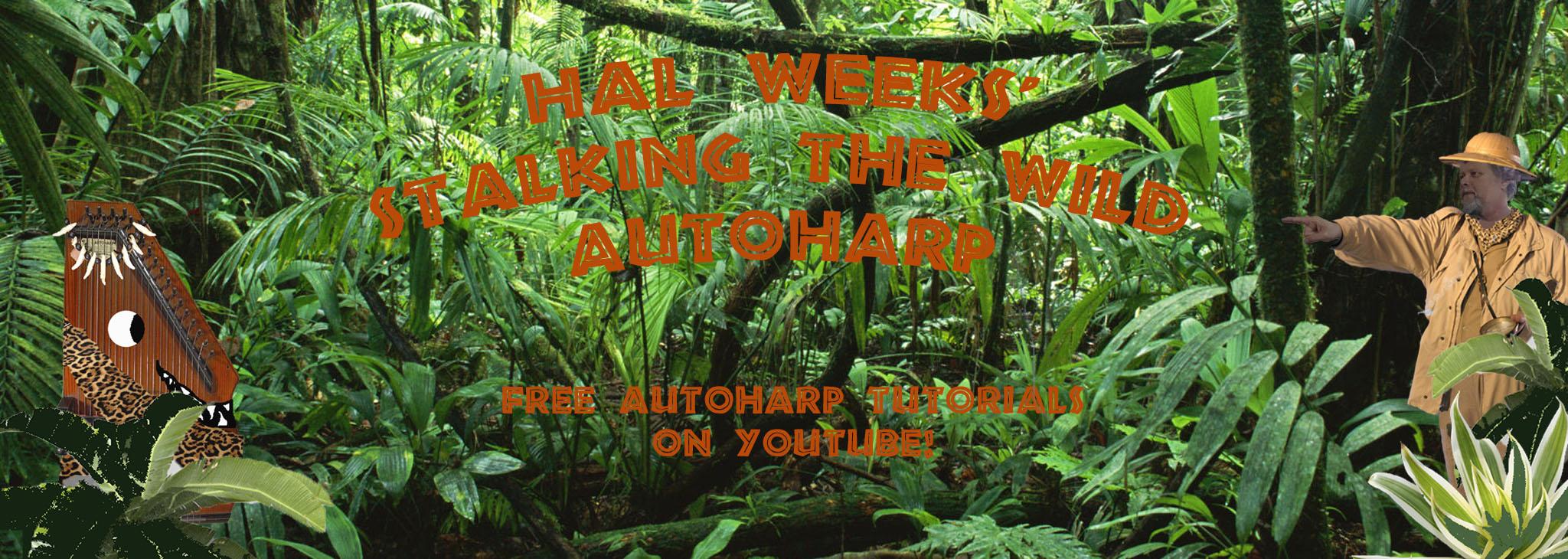swa safari banner yt 3rd try.jpg