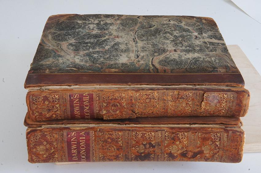 Zoonomia, Erasmus Darwin, 1796, 2 vol.