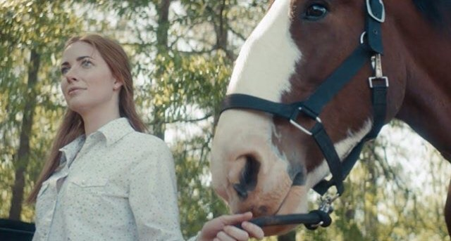 Check out #AprilandDixie on YouTube. A story produced by #Purina filmed at Covenant Grove about our life-long bonds with our friends. Enjoy! https://www.youtube.com/watch?v=sjAalUQkIM0#horse #clydesdale #equestrian #visitoconee