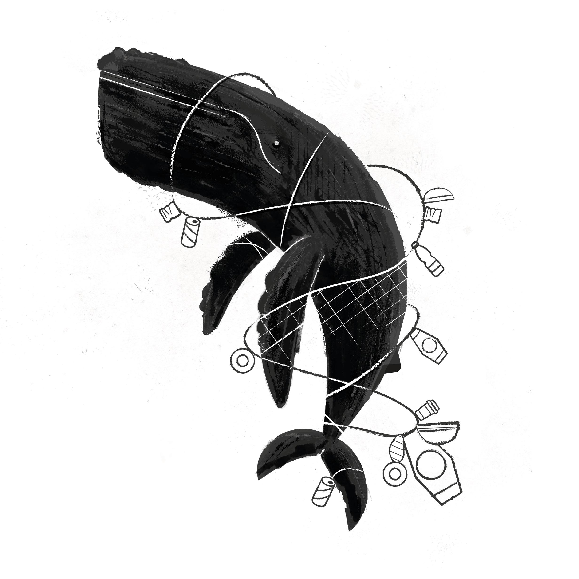 SYSK_GHOST+FISHING2-13.jpg