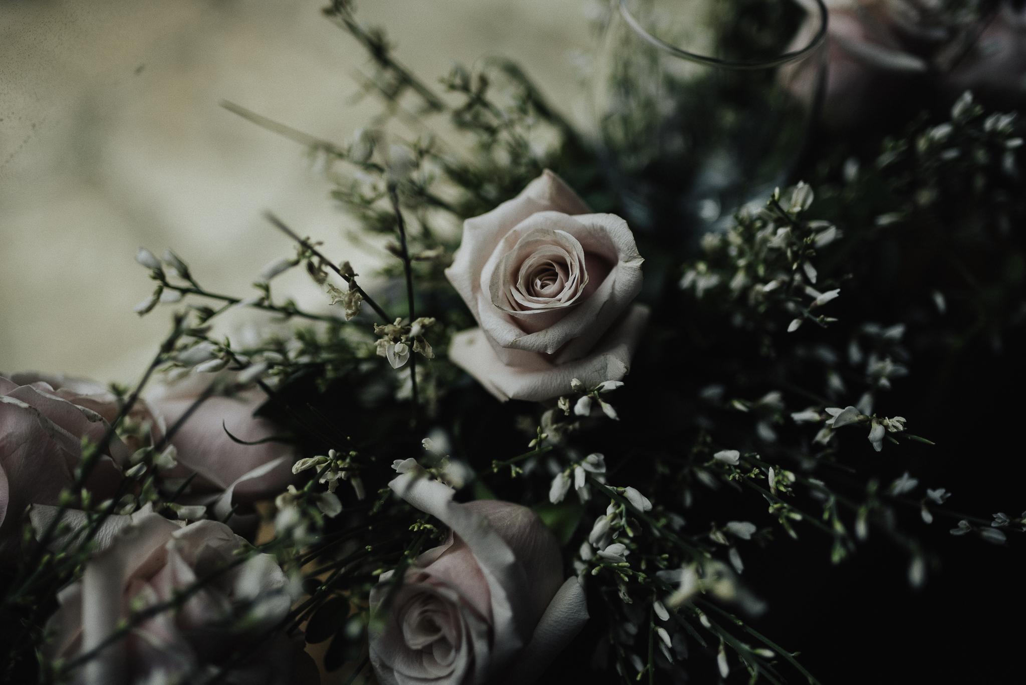 ashley_wedding-1.jpg