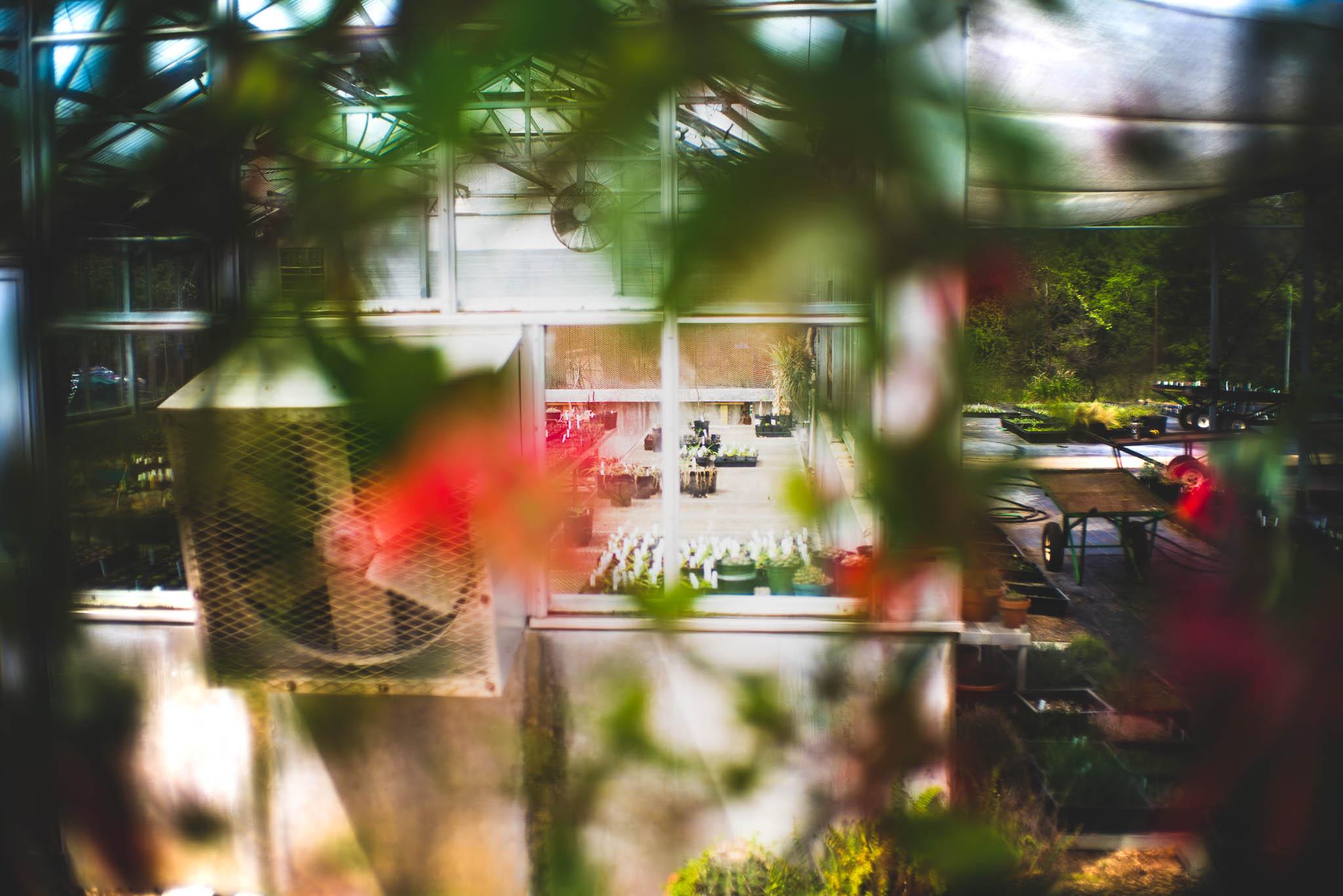 ladybirdcenter-27.jpg