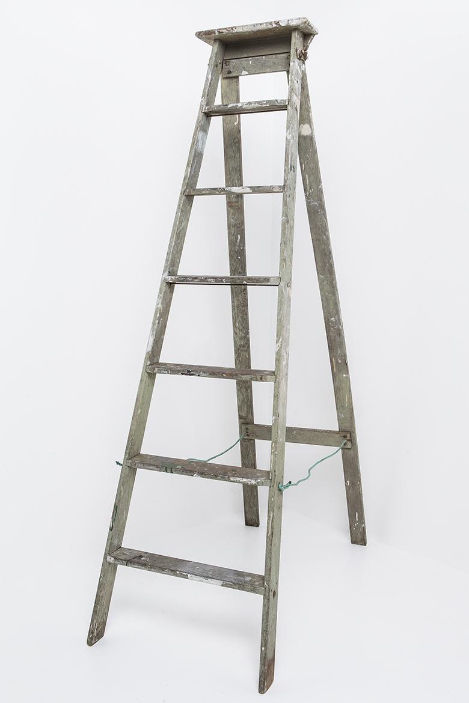 LaddersAntiqueTimberTall.jpg