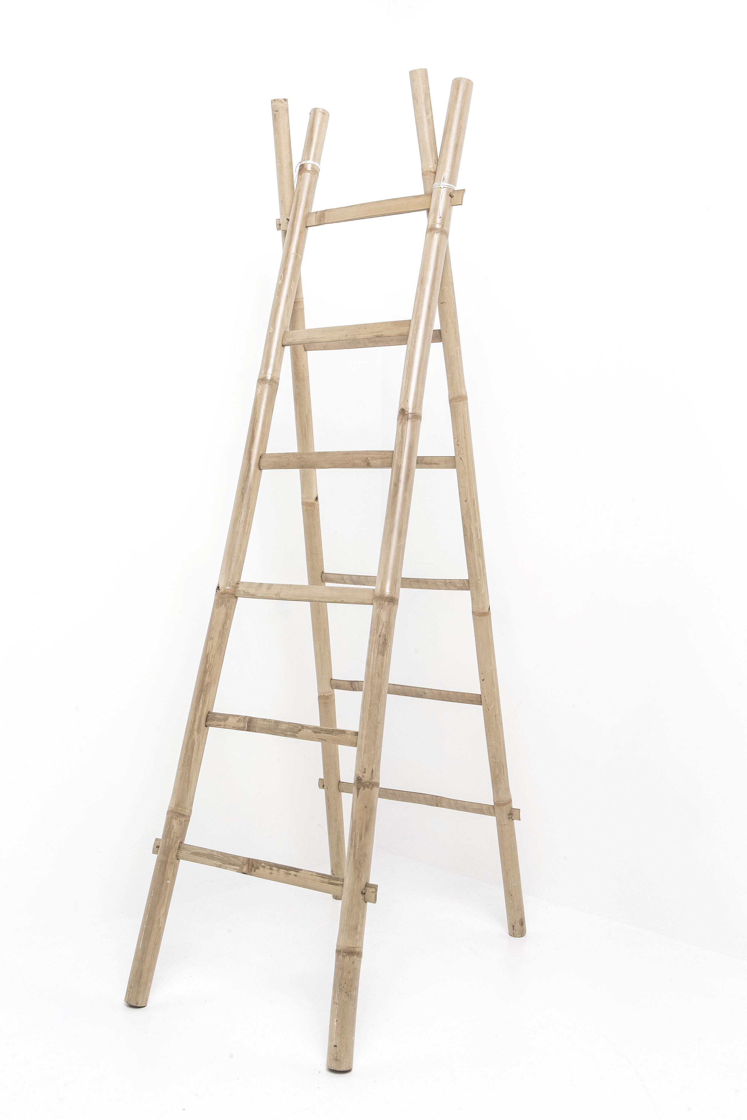 LaddersBamboo.jpg