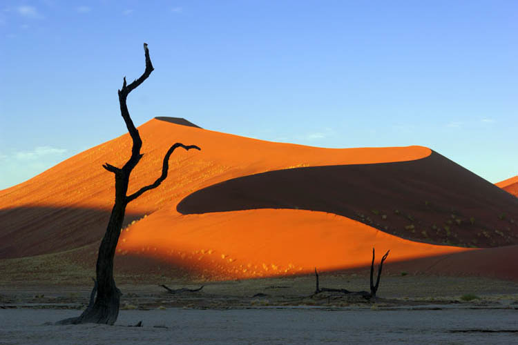 NAMIBIA  // APR 18  – 29, 2012