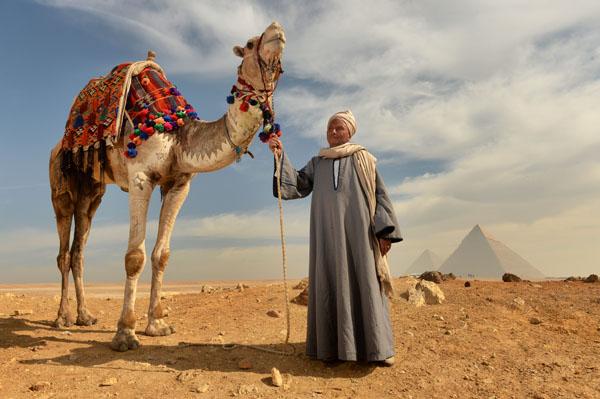 EGYPT & JORDAN  // 2016