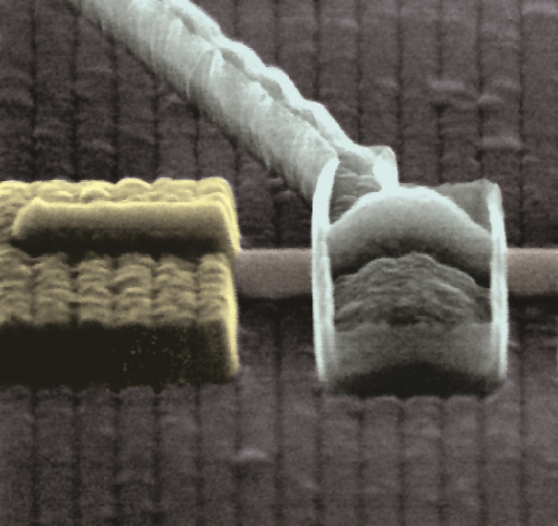 InSb superconducting nanowire device